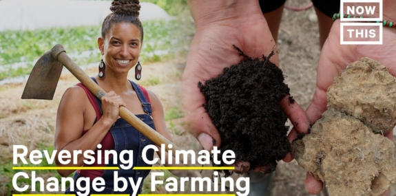 How Regenerative Farming Can Help Combat the Climate Crisis